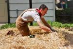 Backyard Harvest urban farmer